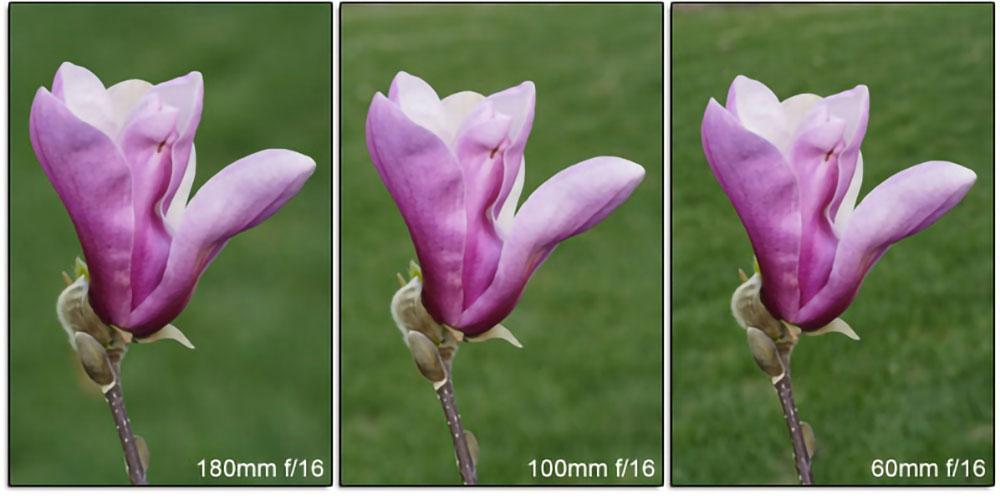Longer focal length for blurred background