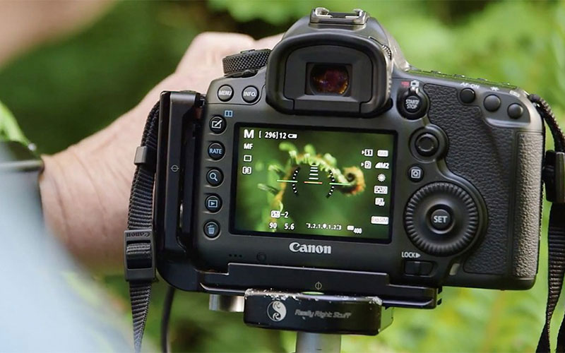 footage from a DSLR camera
